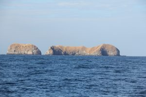 Catalina Islands Jan 2013