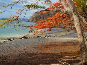 Playa Ocotal, Costa Rica